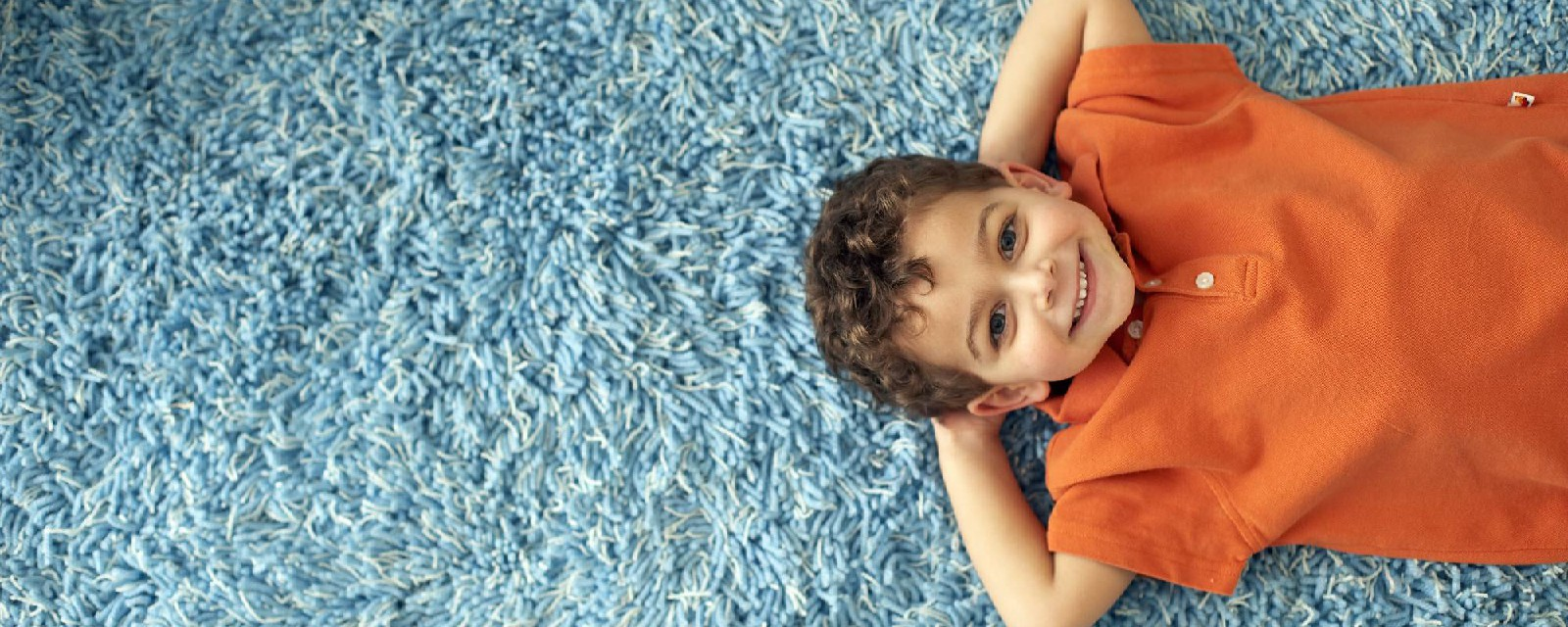Rugs, Carpets, Deep Cleaning & Maintenance